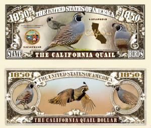 California_Quail_Final.jpg