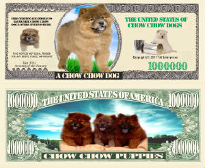 ChowChow_Dog_Final.jpg